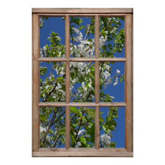 Flowering Tree View from a Window Posters