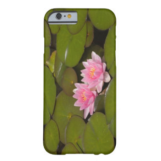 Flowering water lilies barely there iPhone 6 case