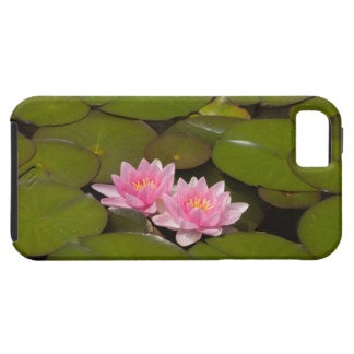 Flowering water lilies case for the iPhone 5