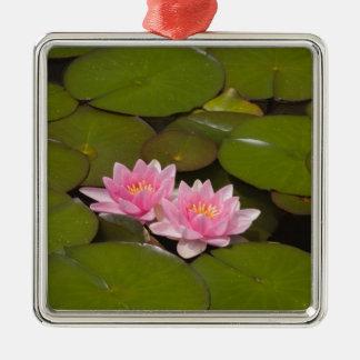 Flowering water lilies christmas ornament