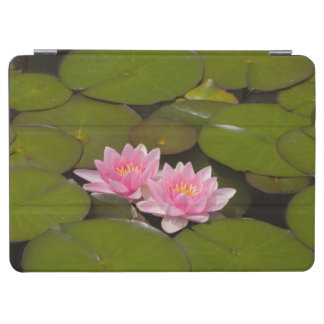 Flowering water lilies iPad air cover