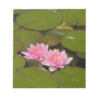 Flowering water lilies notepad