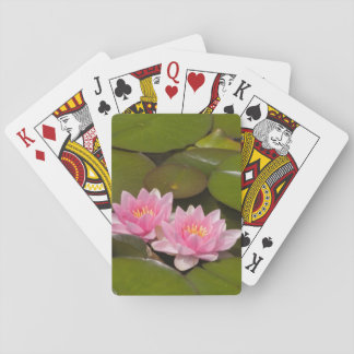Flowering water lilies playing cards