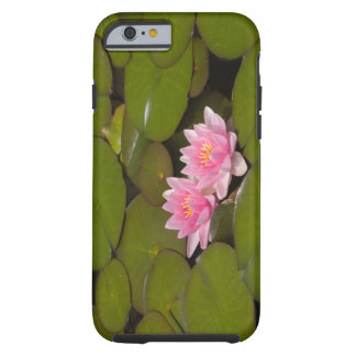 Flowering water lilies tough iPhone 6 case