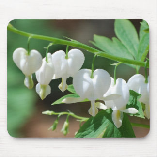 Flowering White Bleeding Heart Mouse Pad