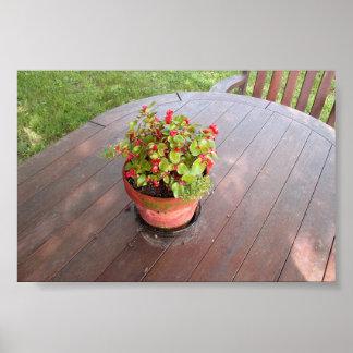flowerpot on table poster