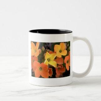 flowers1 Two-Tone mug