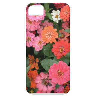 Flowers 15 framed version, colorful flowers bloomi iPhone 5 case