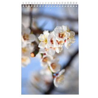 Flowers and Blossoms Calendar