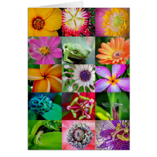 Flowers and Creatures Blank Vertical 5x7 Cards