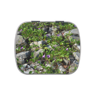 flowers and vines on river rocks florida scene candy tin