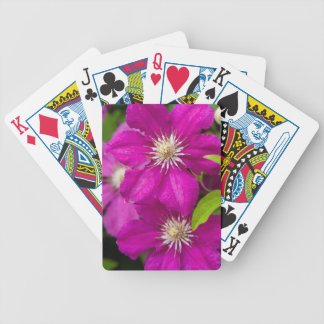 Flowers at Robinette's Apple Haus and Gift Barn 2 Bicycle Playing Cards