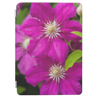 Flowers at Robinette's Apple Haus and Gift Barn 2 iPad Air Cover