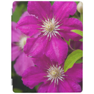 Flowers at Robinette's Apple Haus and Gift Barn 2 iPad Cover