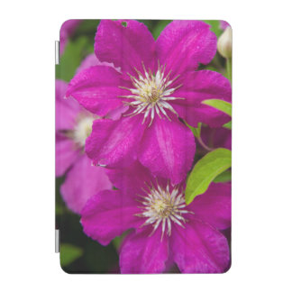Flowers at Robinette's Apple Haus and Gift Barn 2 iPad Mini Cover