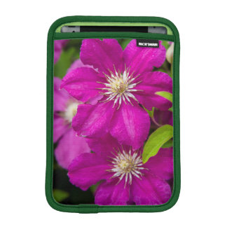 Flowers at Robinette's Apple Haus and Gift Barn 2 iPad Mini Sleeve