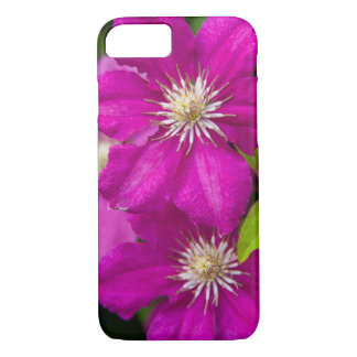 Flowers at Robinette's Apple Haus and Gift Barn 2 iPhone 7 Case