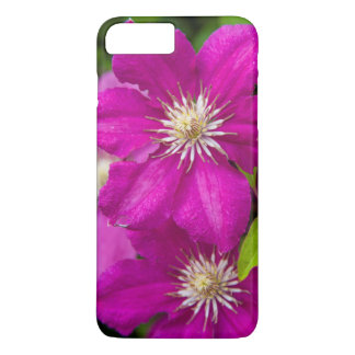 Flowers at Robinette's Apple Haus and Gift Barn 2 iPhone 8 Plus/7 Plus Case