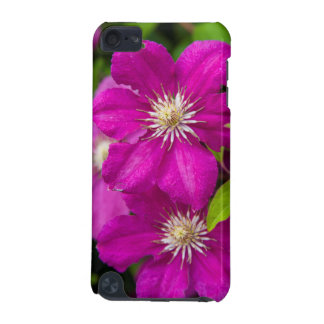 Flowers at Robinette's Apple Haus and Gift Barn 2 iPod Touch 5G Cover