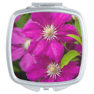 Flowers at Robinette's Apple Haus and Gift Barn 2 Makeup Mirror