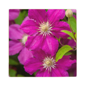 Flowers at Robinette's Apple Haus and Gift Barn 2 Wood Coaster