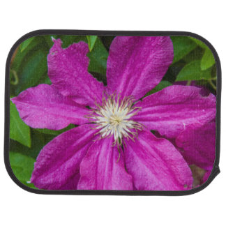 Flowers at Robinette's Apple Haus and Gift Barn Car Mat
