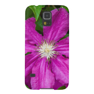 Flowers at Robinette's Apple Haus and Gift Barn Cases For Galaxy S5