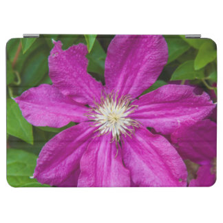 Flowers at Robinette's Apple Haus and Gift Barn iPad Air Cover