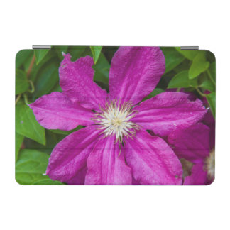 Flowers at Robinette's Apple Haus and Gift Barn iPad Mini Cover