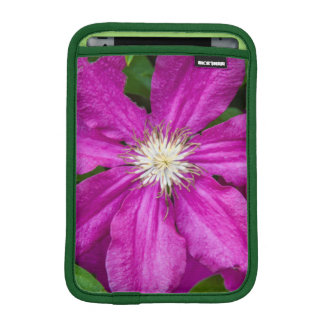 Flowers at Robinette's Apple Haus and Gift Barn iPad Mini Sleeve