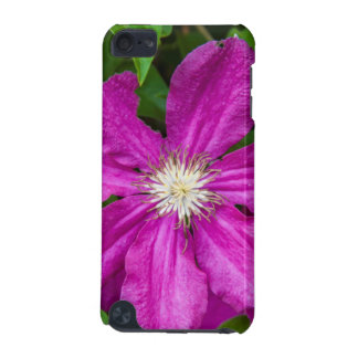 Flowers at Robinette's Apple Haus and Gift Barn iPod Touch (5th Generation) Case