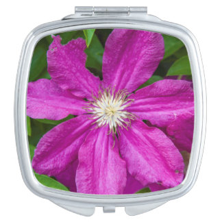 Flowers at Robinette's Apple Haus and Gift Barn Travel Mirrors