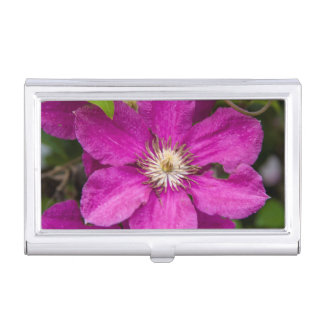 Flowers At Robinette's Apple Haus & Gift Barn Business Card Holder