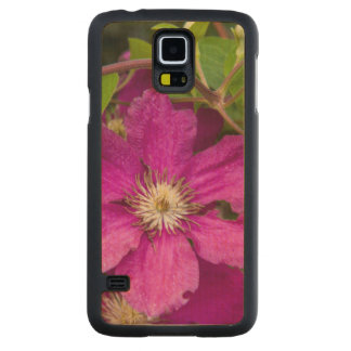Flowers At Robinette's Apple Haus & Gift Barn Carved Maple Galaxy S5 Case
