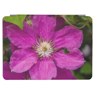 Flowers At Robinette's Apple Haus & Gift Barn iPad Air Cover