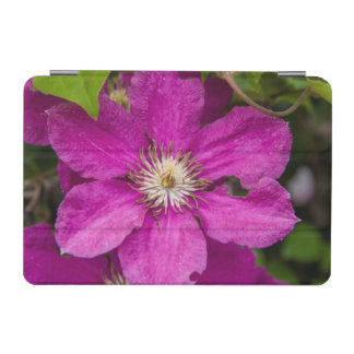 Flowers At Robinette's Apple Haus & Gift Barn iPad Mini Cover