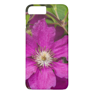 Flowers At Robinette's Apple Haus & Gift Barn iPhone 7 Plus Case