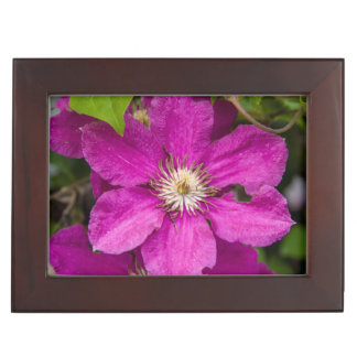 Flowers At Robinette's Apple Haus & Gift Barn Keepsake Box