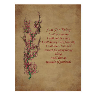 Flowers Attitude Prayer Inspirational Postcard