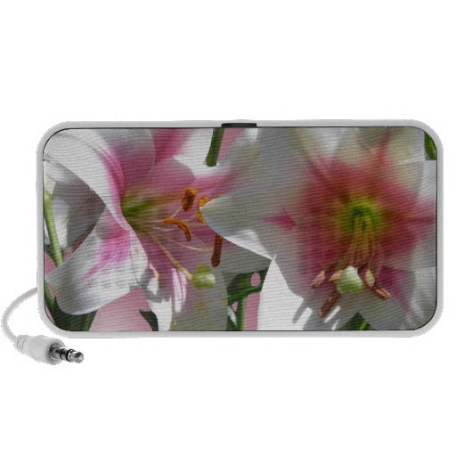 Flowers Blossoms Spring Garden Love Shower Party PC Speakers