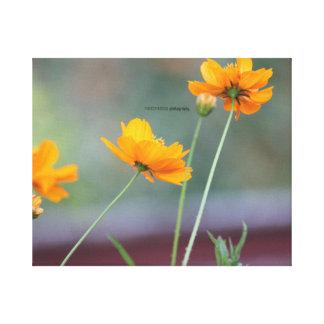 Flowers Canvas