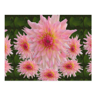 Flowers Colorful return+gifts giveaway party gifts Post Card