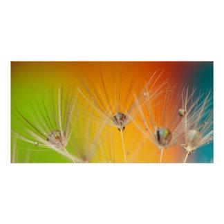 Flowers Dandelion Wedding Shower Love Peace Perfect Poster