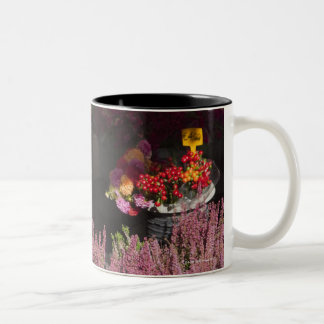 flowers displayed for sale in the Campo de' Two-Tone Coffee Mug