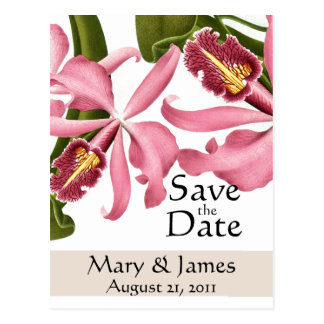 Flowers Floral Wedding Garden Marriage Postcard