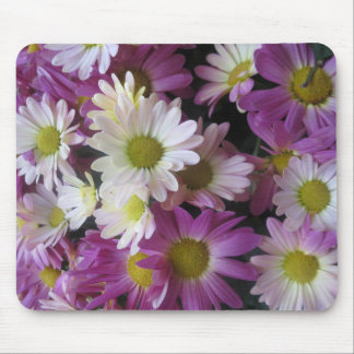 Flowers from Butterfly Garden LasVegas USA America Mouse Pad