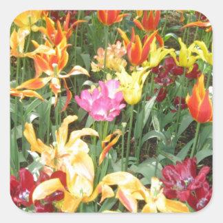 Flowers from Holland, Keukenhof Square Sticker