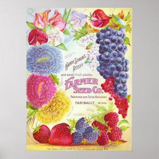 Flowers & Fruit Vintage Catalog Cover Print