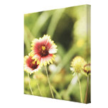 Flowers Gallery Wrap Canvas