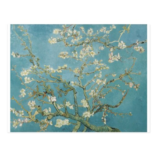 Flowers Gogh Branches Almond Blossoms Nature Post Card